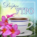 Доброе утро чай открытка мимоза