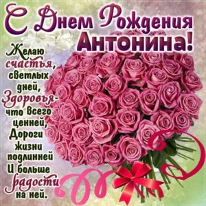 С днем рождения Антонина картинки поздравить. Розовые розы, букет цветов, с фразами, стих надпись
